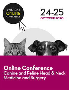 Canine & Feline Head and Neck Medicine & Surgery